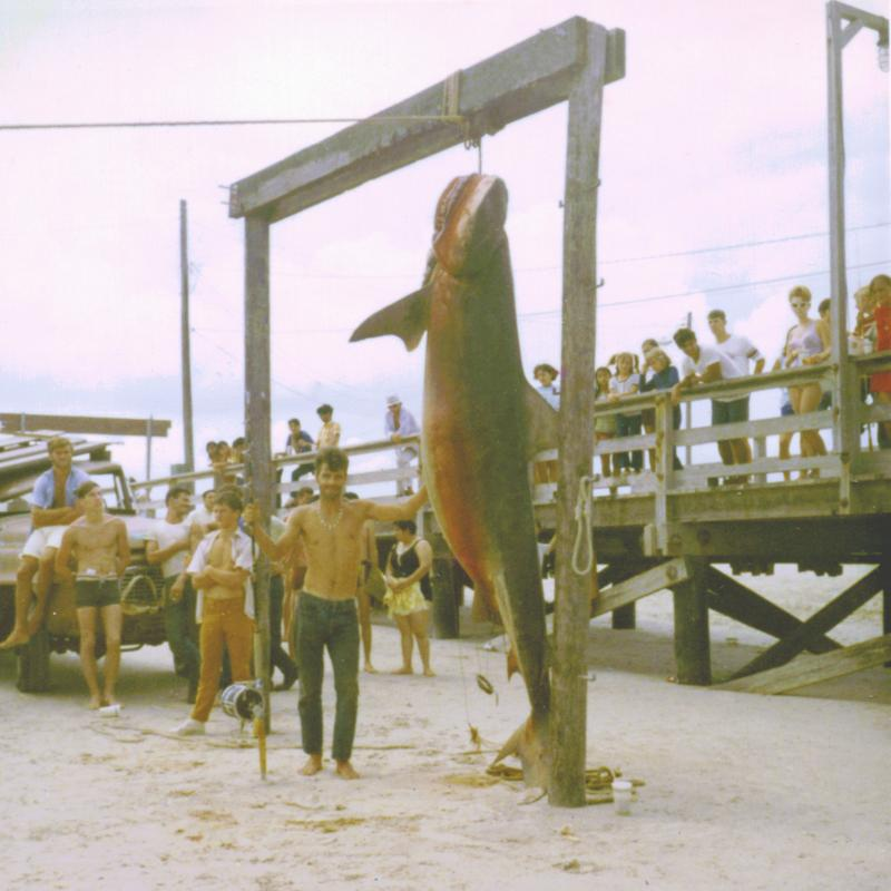 Shark fishing lost boys outdoors for South padre island fishing pier